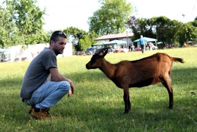 visita a porcikomodi magnago