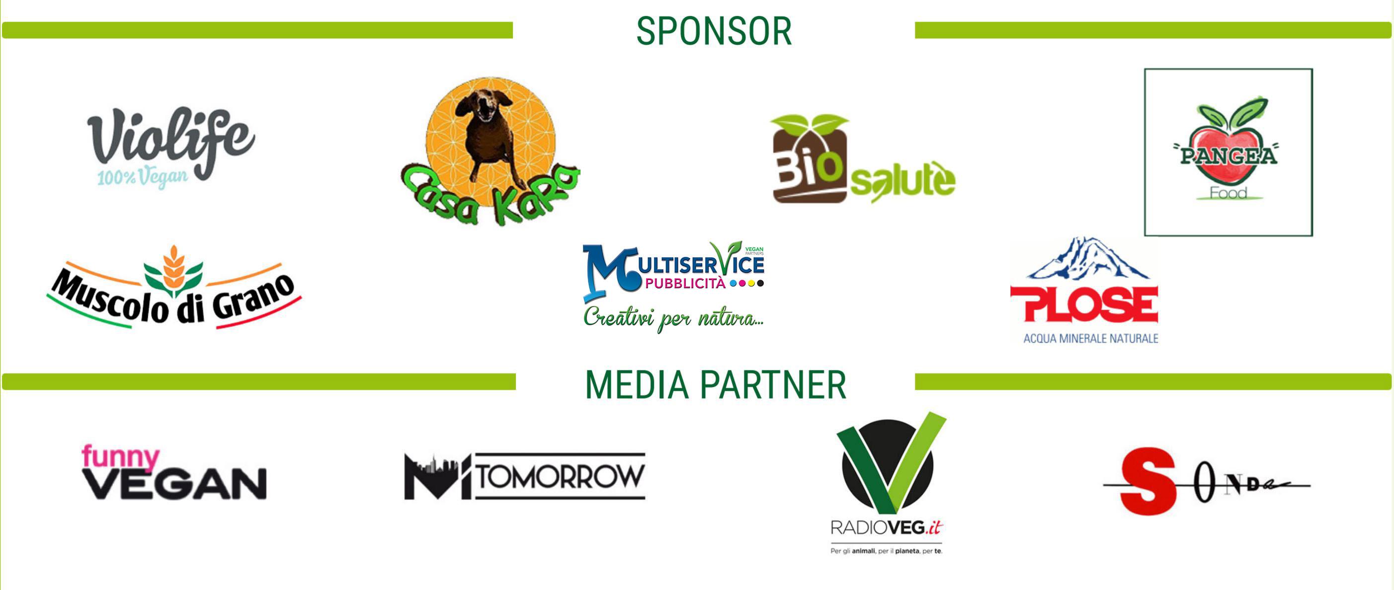 sponsor miveg 2019