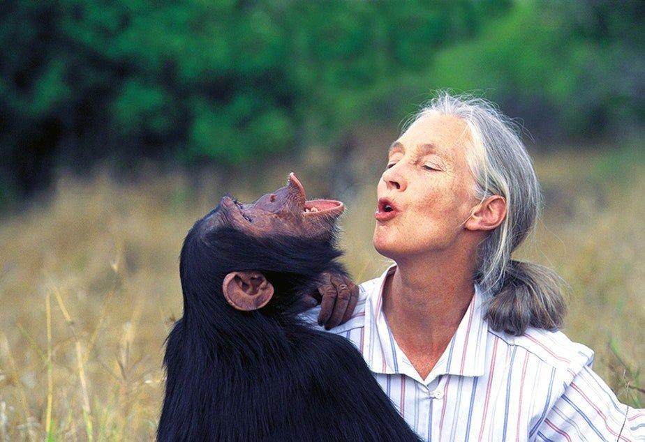 Emmanuela Diana - la risata dei cani