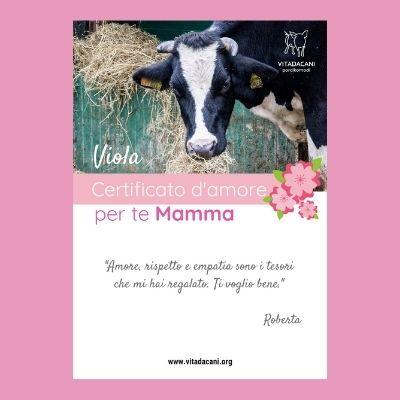 Viola Festa della Mamma