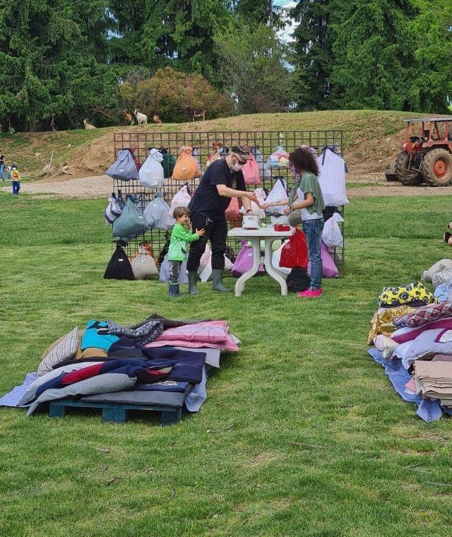 picnic porcikomodi