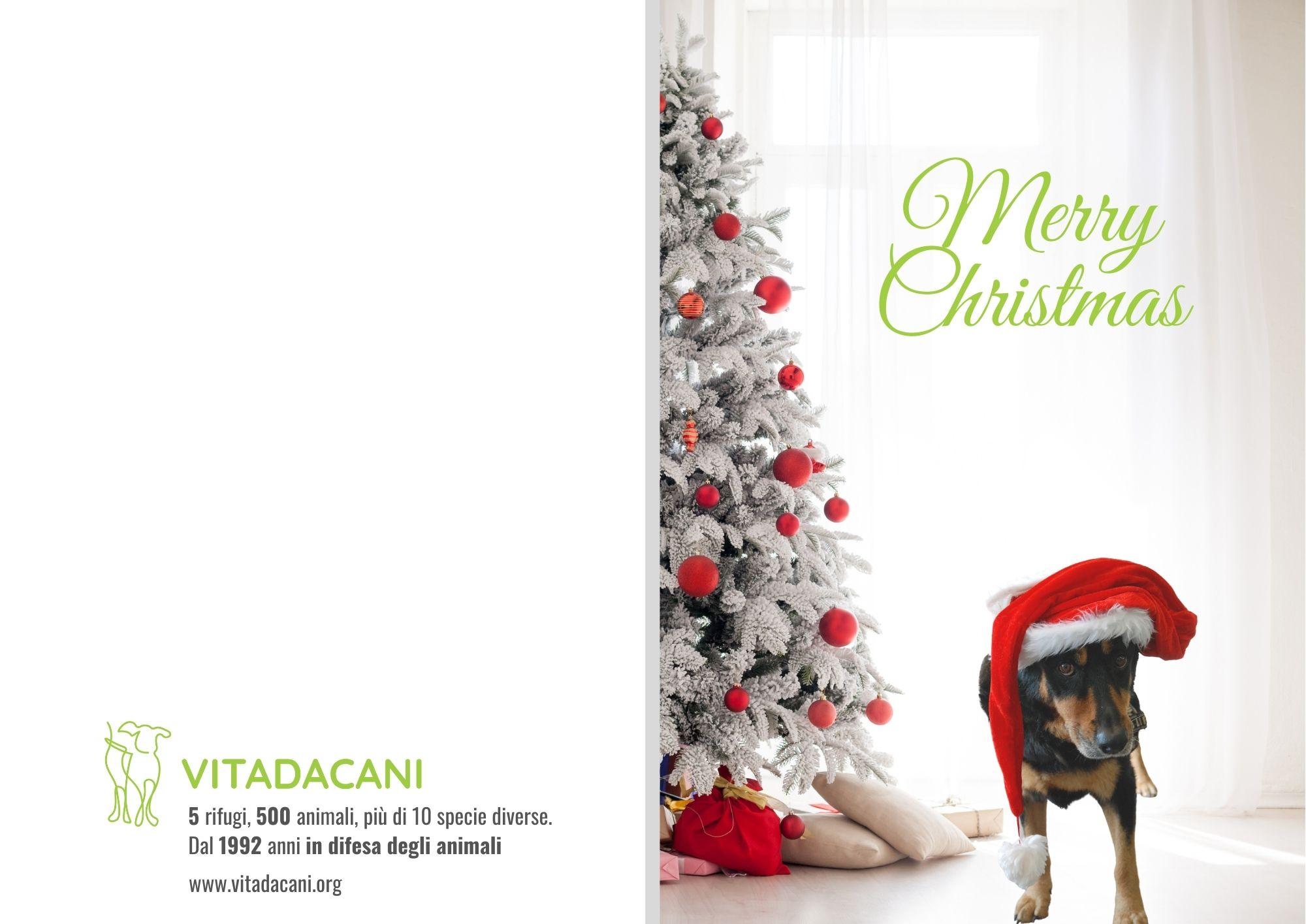 Biglietti di Natale per Aziende